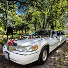Hochzeitsauto-Vermietung - Stretch-Limousine - Lincoln Town Car  - Lincoln Stretch-Limousinen von Limos-Berlin