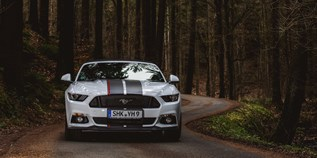 Hochzeitsauto-Vermietung - yellowhummer - Ford Mustang GT V8