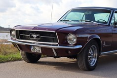 Hochzeitsauto-Vermietung - Farbe: Rot - Wees - Ford Mustang 1967